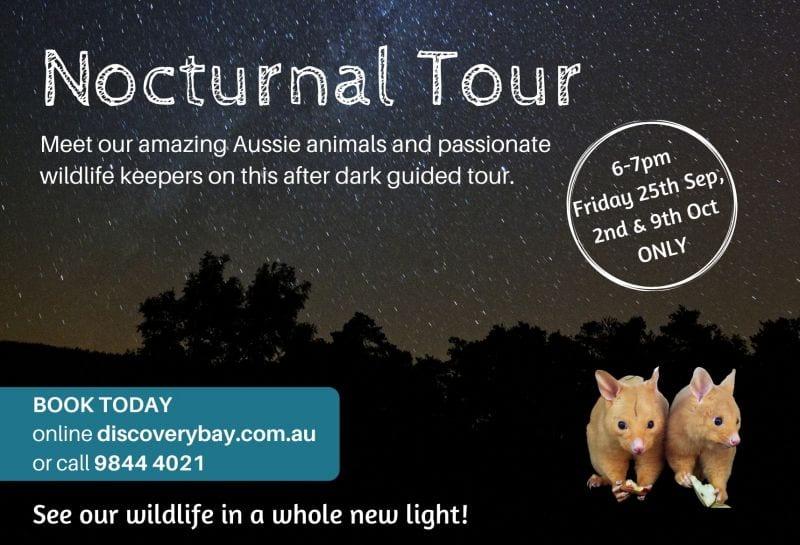 Noctural Tour