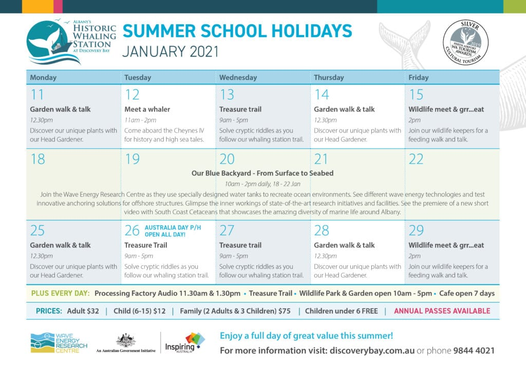 January school holiday program