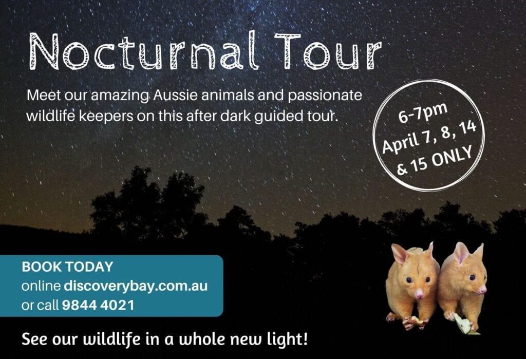Nocturnal Tour April 2021